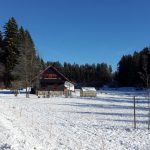 winter-waidlerhaus-1