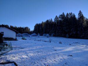 wintermorgen-3