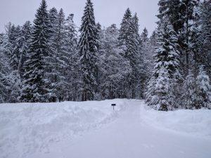 Schon wieder liegt eine feine Schneeschicht auf dem Weg zur Straße